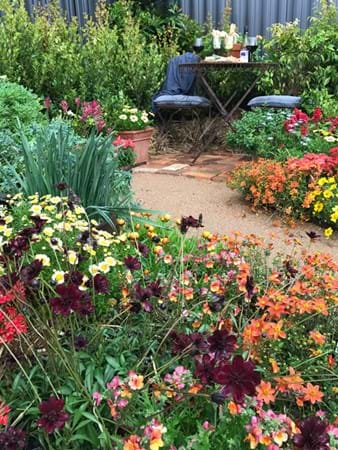 Super colourful display garden by Clint Kenny Design