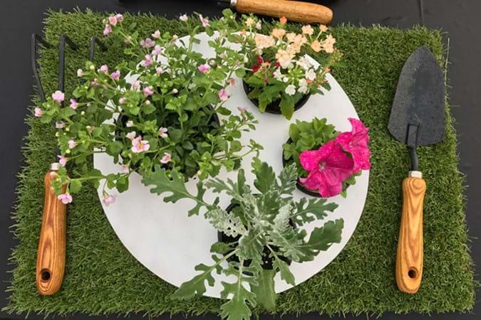 """A gardener's """"meal"""" by Green Cloud Nursery"""