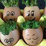 How to Grow an Egghead