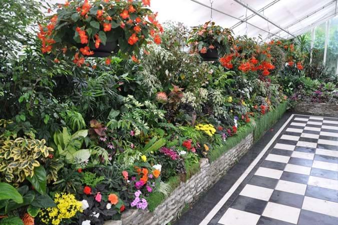 Victorian Flower Garden – flower display