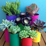 How To Make Pots From Tin Cans