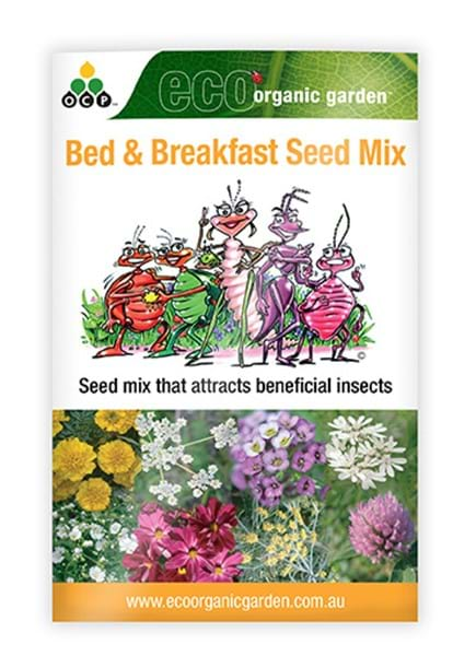 Bed & Breakfast Seed Mix