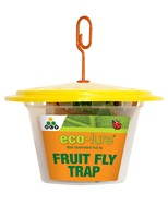 eco-lure male Queensland fruit fly trap